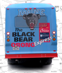 Black Bear Express