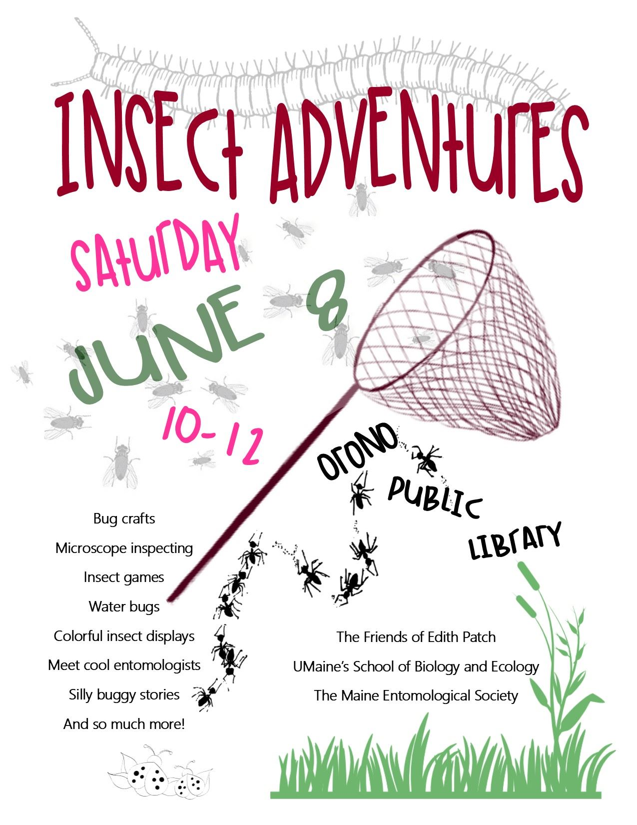 Insect Adventures 2019