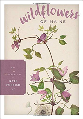 wildflowers of maine book cover